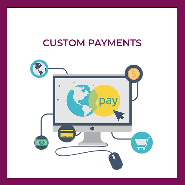 custom payments icon